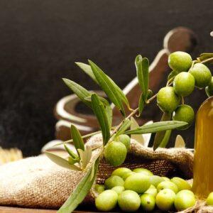 Impara a riconoscere l'olio d'oliva