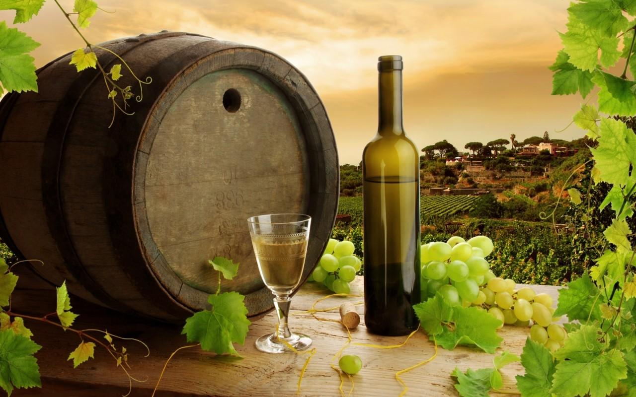 Come capire se un vino è buono?