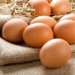 Le virtù dell'uovo