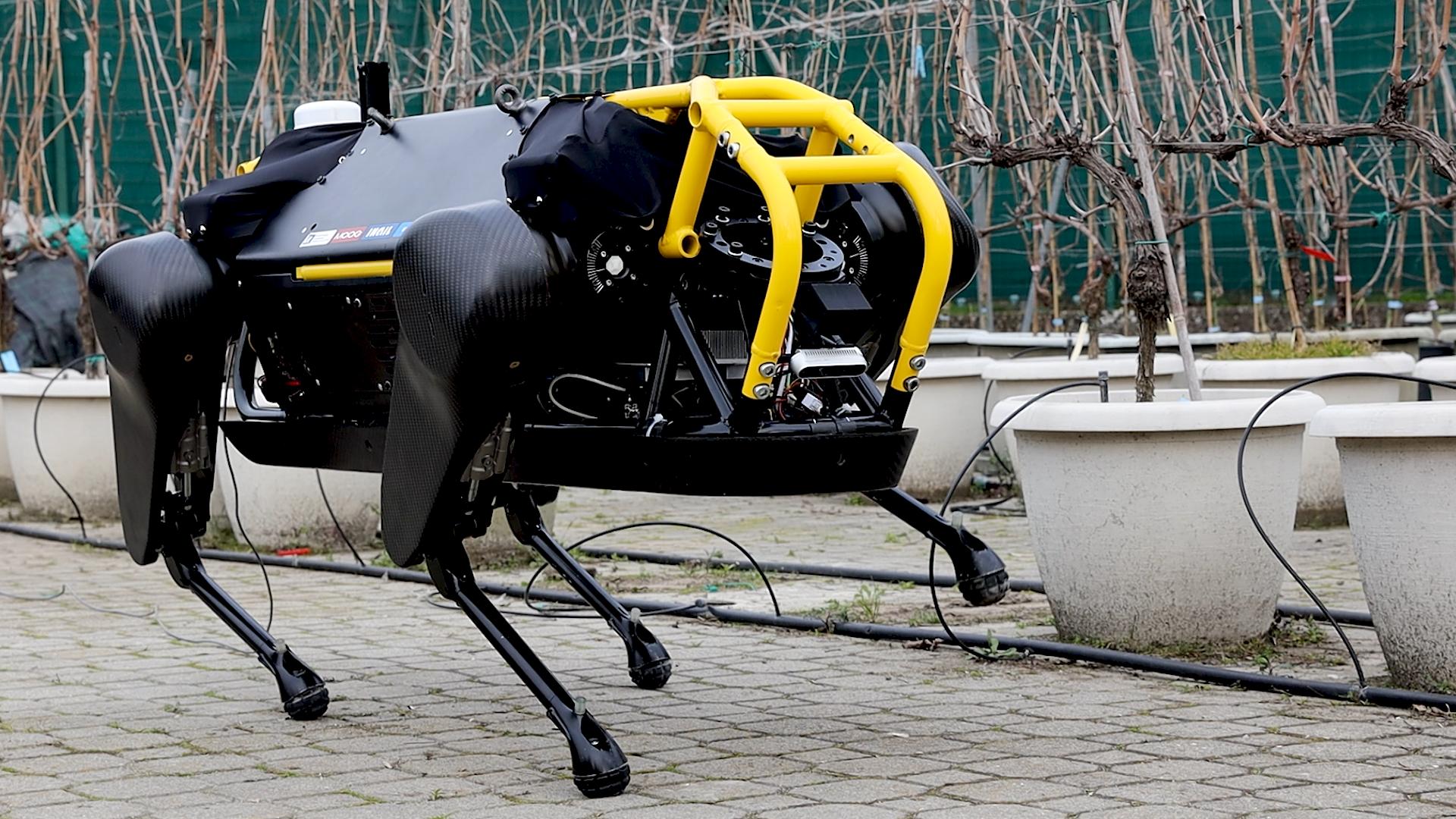 Agricoltura e robotica: macchine intelligenti poteranno le viti e raccoglieranno l'uva. Il nuovo laboratorio di Università Cattolica e Istituto Italiano di Tecnologia