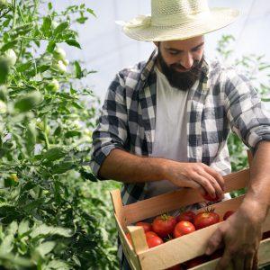 Read more about the article Bonus lavoratori agricoli