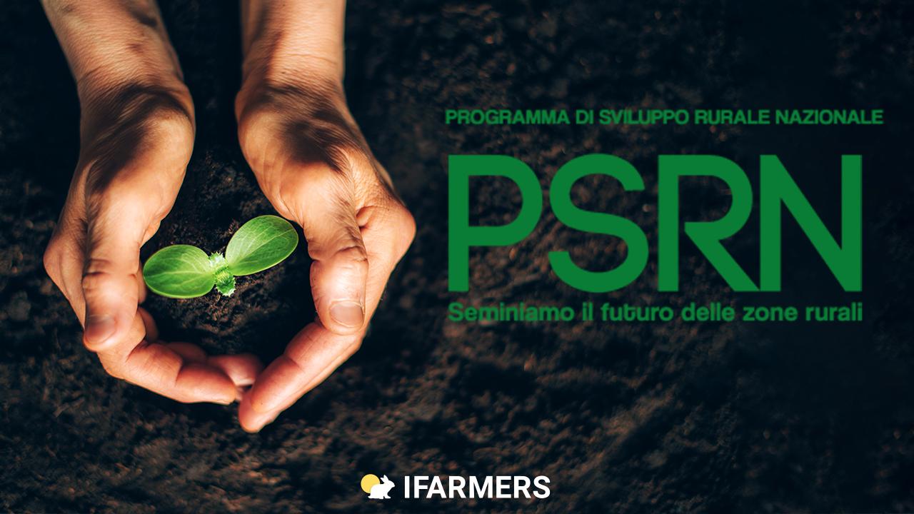 Il Programma di Sviluppo Rurale Nazionale (PSRN). Un breve sguardo ad obiettivi, risultati ed evoluzione