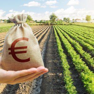 Acconto IMU 2021 nel settore agricolo