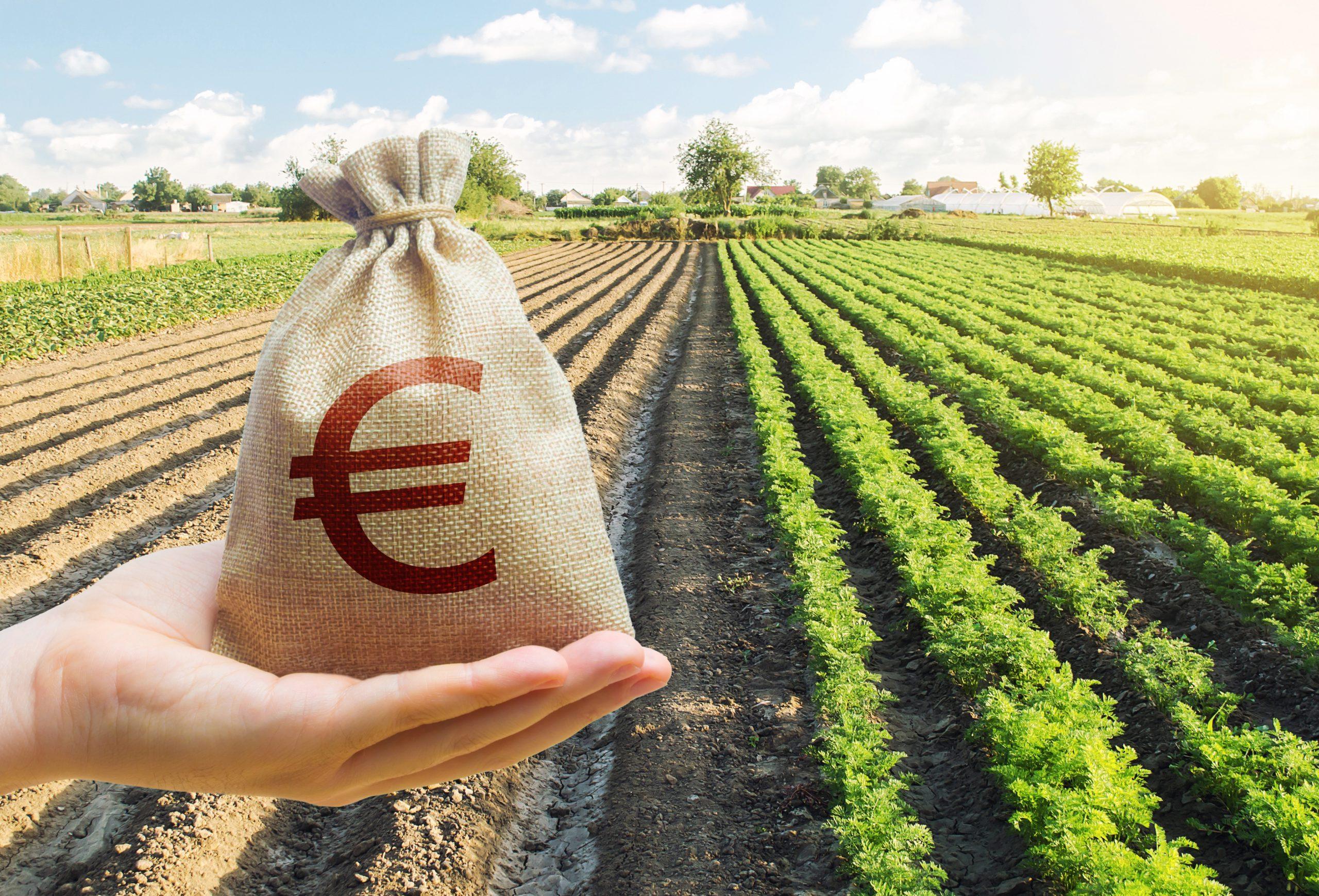 Nuovo tasso di interesse legale con effetti sul settore agricolo