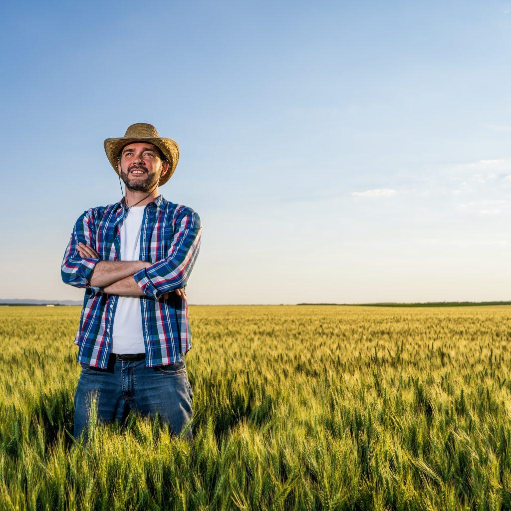 Imprenditore agricolo professionale