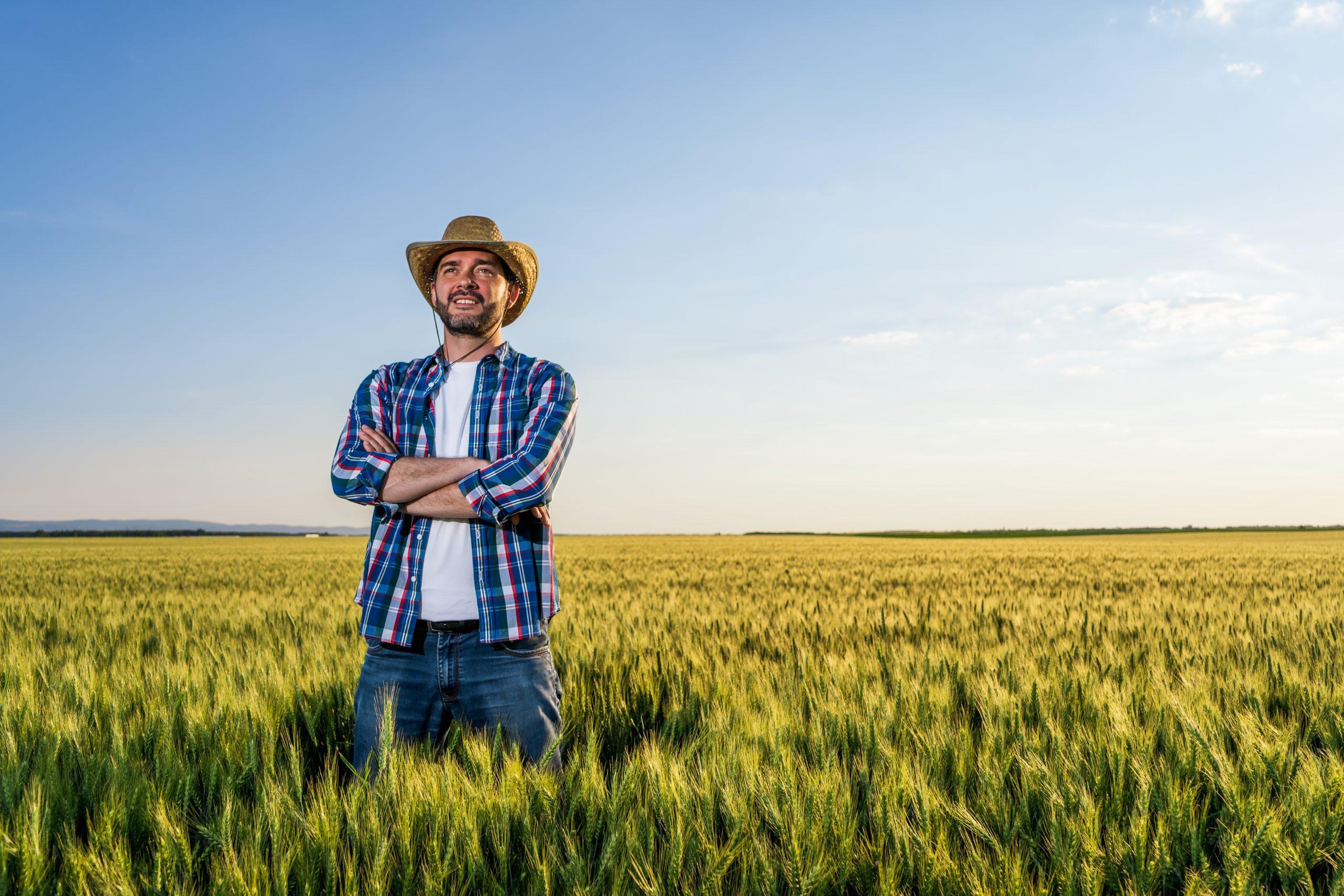 IAP: Imprenditore agricolo professionale
